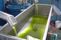 Extra Vierge olijf olie uit Griekenland  EVO1  250 ml