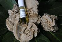 Olieparfum Kamperfoelie OPK1  10 ml