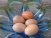 Prachtige ei te gebruiken als afsluiting Ei6 5 cm